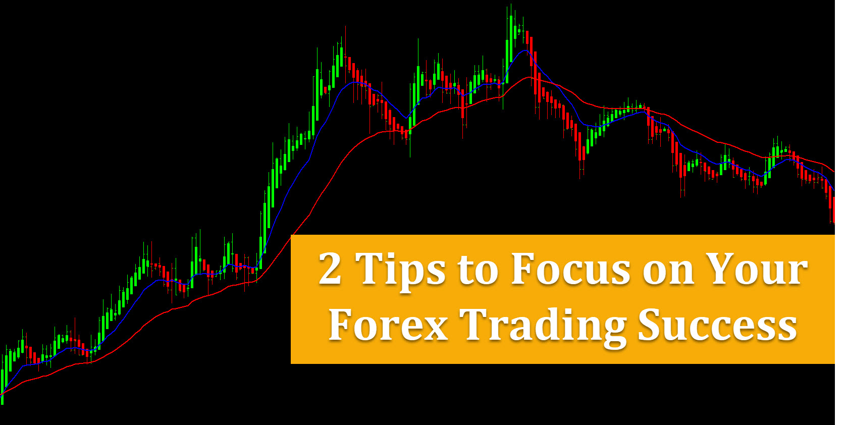 2 Tips to Focus on Your Forex Trading Success